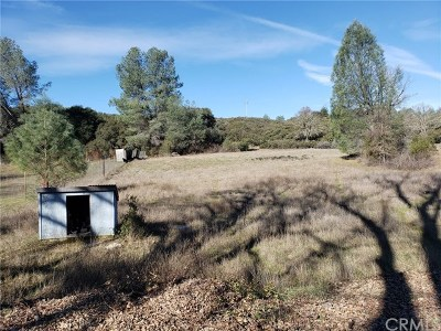 Kelseyville Residential Lots & Land For Sale: 9925 Carder Road