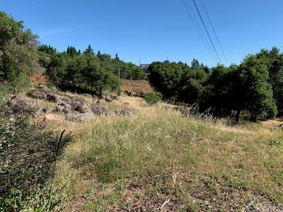 Kelseyville Residential Lots & Land For Sale: 5595 Maya Road