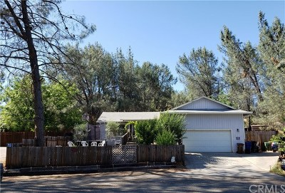 Kelseyville Single Family Home For Sale: 9850 Siskiyou Court