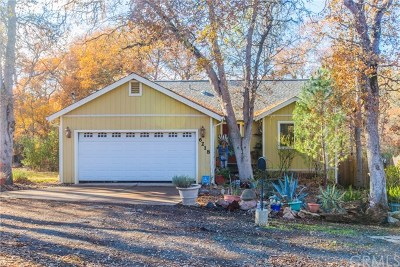 Clearlake Single Family Home For Sale: 6218 Vallejo Avenue