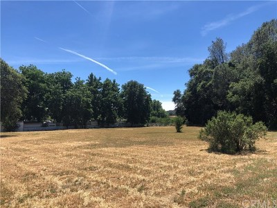 Upper Lake Residential Lots & Land For Sale: 1305 W State Highway 20
