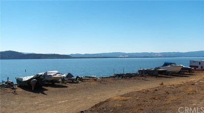 Lucerne Residential Lots & Land For Sale: 7575 E State Hwy 20