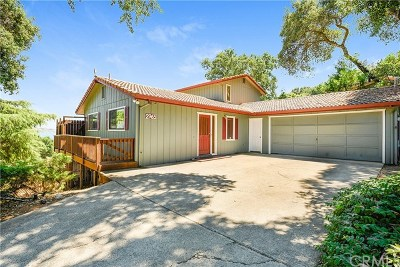 Kelseyville Single Family Home For Sale: 2965 Southlake Drive