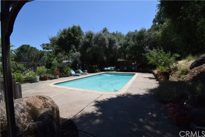 Kelseyville Single Family Home For Sale: 8959 Soda Bay