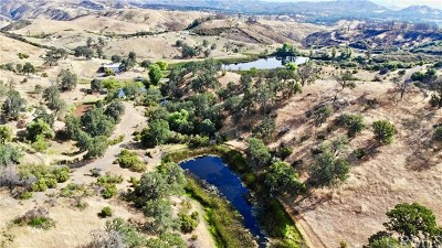 Lakeport Residential Lots & Land For Sale: 3700 Dessie Drive