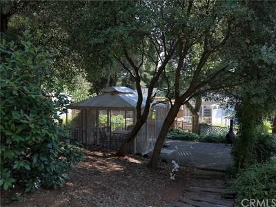 Kelseyville Single Family Home For Sale: 7980 Buckingham Court