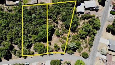 Kelseyville Residential Lots & Land For Sale: 5313 Monterey Place