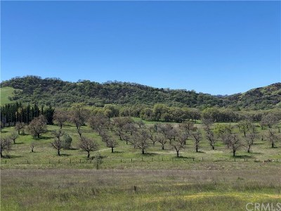 Lakeport Residential Lots & Land For Sale: 2959 State Hwy 175