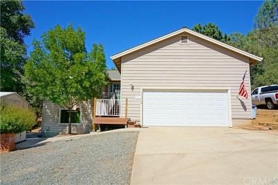 Kelseyville Single Family Home For Sale: 3532 Morningside Circle