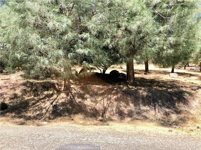 Kelseyville Residential Lots & Land For Sale: 10280 Hok Has Ha Lane