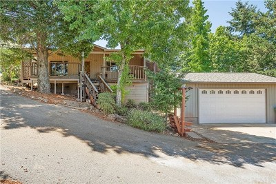 Kelseyville Single Family Home For Sale: 9607 Marmot Way