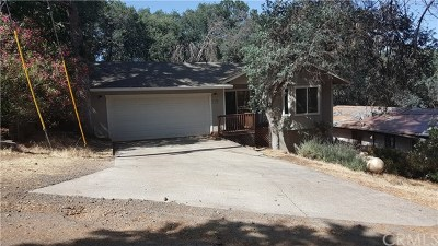 Kelseyville Single Family Home For Sale: 10420 Boren Bega Drive