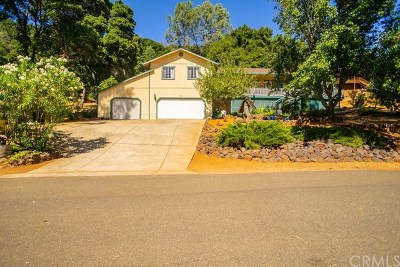 Kelseyville Single Family Home For Sale: 2785 Greenway Drive