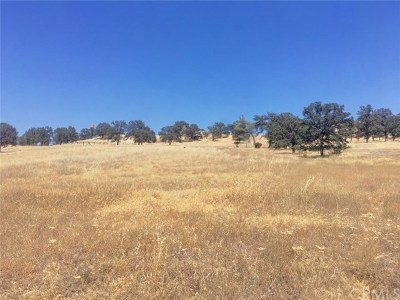 Clearlake Oaks Residential Lots & Land For Sale: 1800 New Long Valley Road