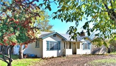 Clearlake Single Family Home For Sale: 14520 Burns Valley Road