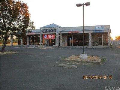 Lakeport Commercial For Sale: 2570 S Main Street