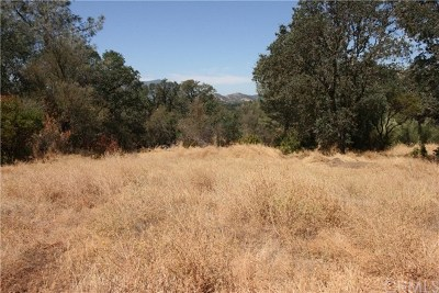 Clearlake Residential Lots & Land For Sale: 3561 Filmore Avenue