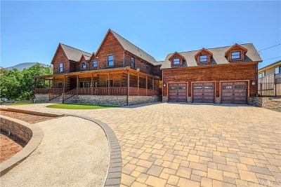 Kelseyville Single Family Home For Sale: 1785 Eastlake Drive