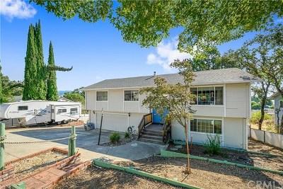 Lakeport Single Family Home For Sale: 4360 Oak Avenue