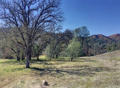 Clearlake Oaks Residential Lots & Land For Sale: 3105 Wolf Creek Road