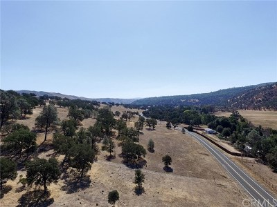 Clearlake Oaks Residential Lots & Land For Sale: 1900 New Long Valley Road