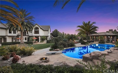 Coto de Caza Single Family Home For Sale: 31372 Trigo Trail