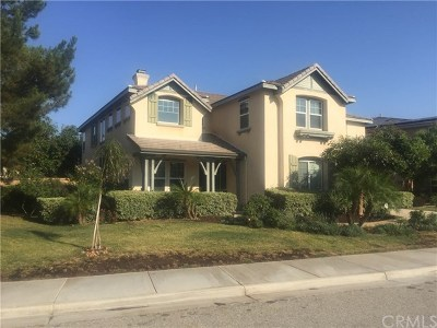 Murrieta Single Family Home For Sale: 36891 Pictor Avenue