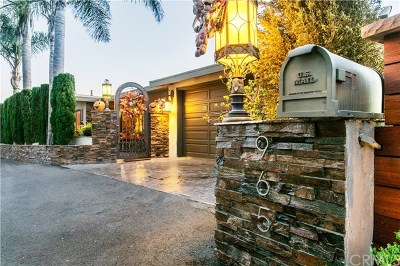 Laguna Beach Single Family Home For Sale: 965 Coast View Drive