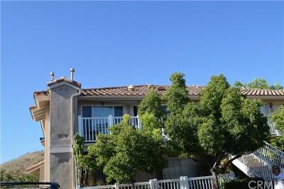 Trabuco Canyon Condo/Townhouse For Sale: 19801 Meadow Ridge Drive #45