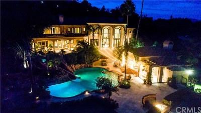 San Juan Capistrano Single Family Home For Sale: 31545 Peppertree Bend