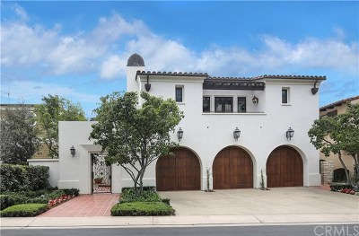 Dana Point Single Family Home For Sale: 9 White Water Lane