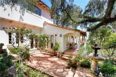 Laguna Beach Single Family Home For Sale: 31402 Ocean View Street