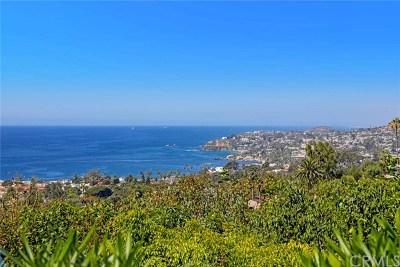 Laguna Beach Single Family Home For Sale: 1008 Van Dyke Drive