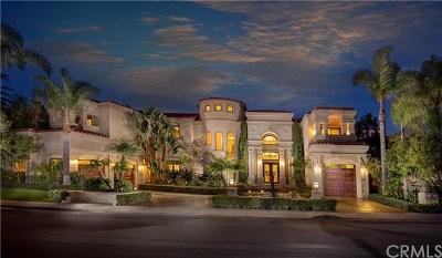 Laguna Niguel Single Family Home For Sale: 24 Vista Montemar