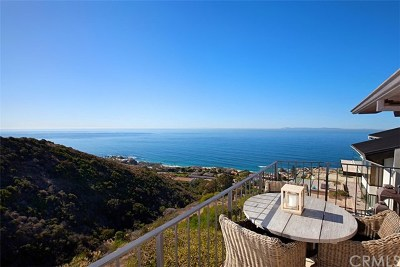 Laguna Beach Single Family Home For Sale: 651 Nyes Place