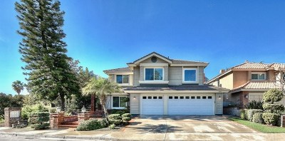 Mission Viejo Single Family Home For Sale: 28401 Fieldbrook