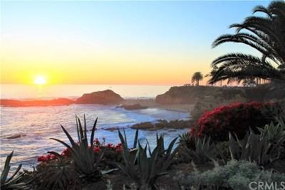 Laguna Beach Condo/Townhouse For Sale: 262 Jasmine Street #8