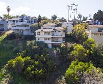 Laguna Beach Single Family Home For Sale: 2050 San Remo Drive