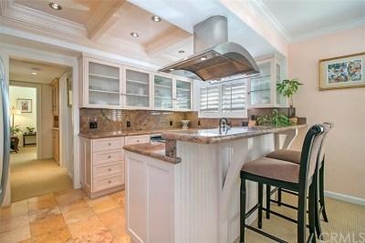Laguna Beach Condo/Townhouse For Sale: 255 Cypress Drive #14
