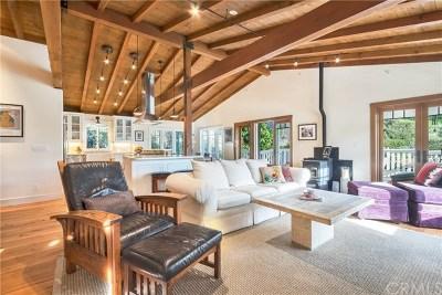 Laguna Beach Single Family Home For Sale: 925 Park Avenue