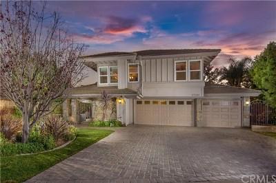 San Juan Capistrano Single Family Home For Sale: 27682 Paseo Barona