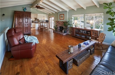 Laguna Beach Single Family Home For Sale: 430 Broadway Street