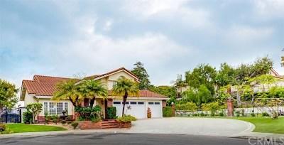 Laguna Niguel Single Family Home For Sale: 4 Compadre Circle