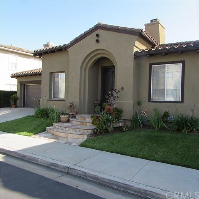 San Juan Capistrano Single Family Home For Sale: 29811 Summer Walk Drive
