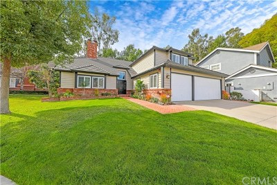 Laguna Niguel Single Family Home For Sale: 30841 Olympic Place