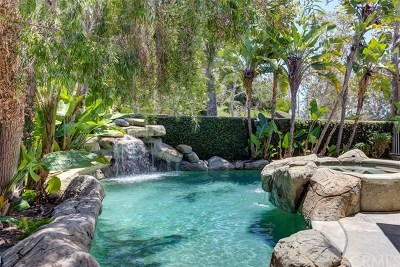Aliso Viejo Single Family Home Active Under Contract: 42 Deerwood