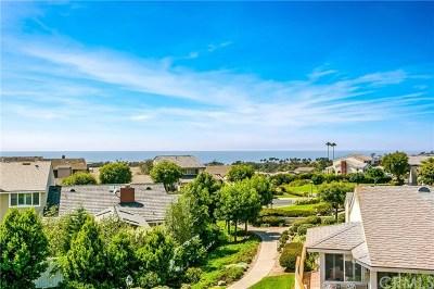 Dana Point Single Family Home For Sale: 33541 Moonsail Drive