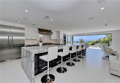 San Clemente Single Family Home For Sale: 506 Ardilla Lane