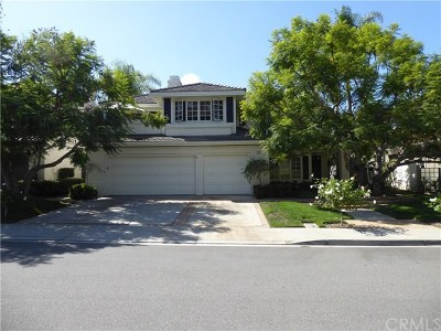 Laguna Niguel Single Family Home For Sale: 33 Hastings