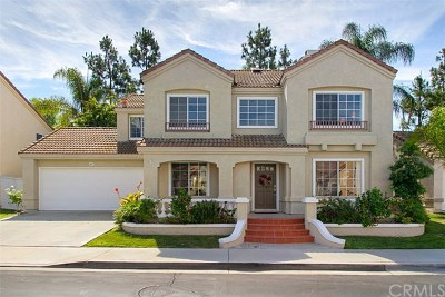 Aliso Viejo Single Family Home For Sale: 44 Santa Monica Street